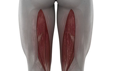 Rotura de fibras musculares. ¿Que son y qué las causa?
